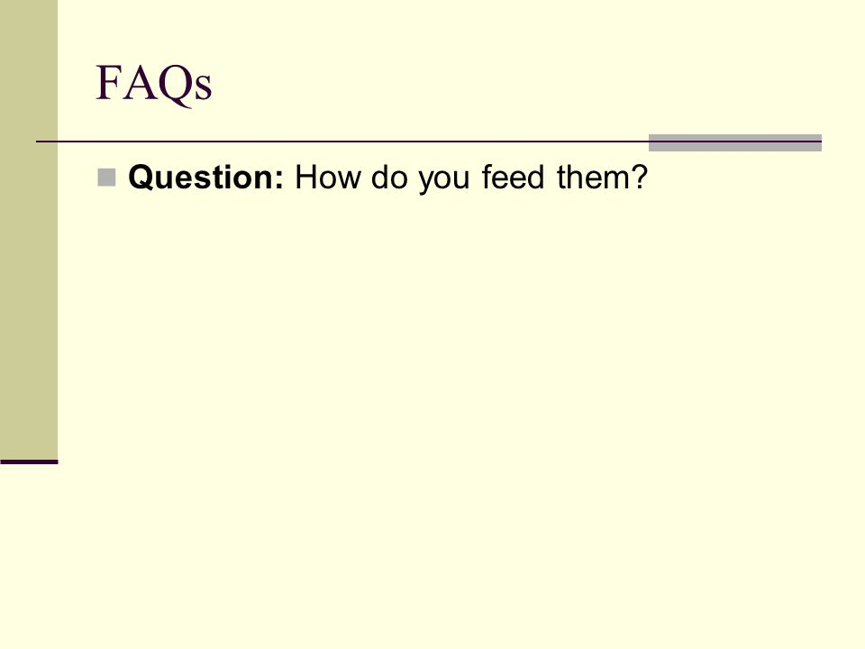 FAQs Question: How do you feed them