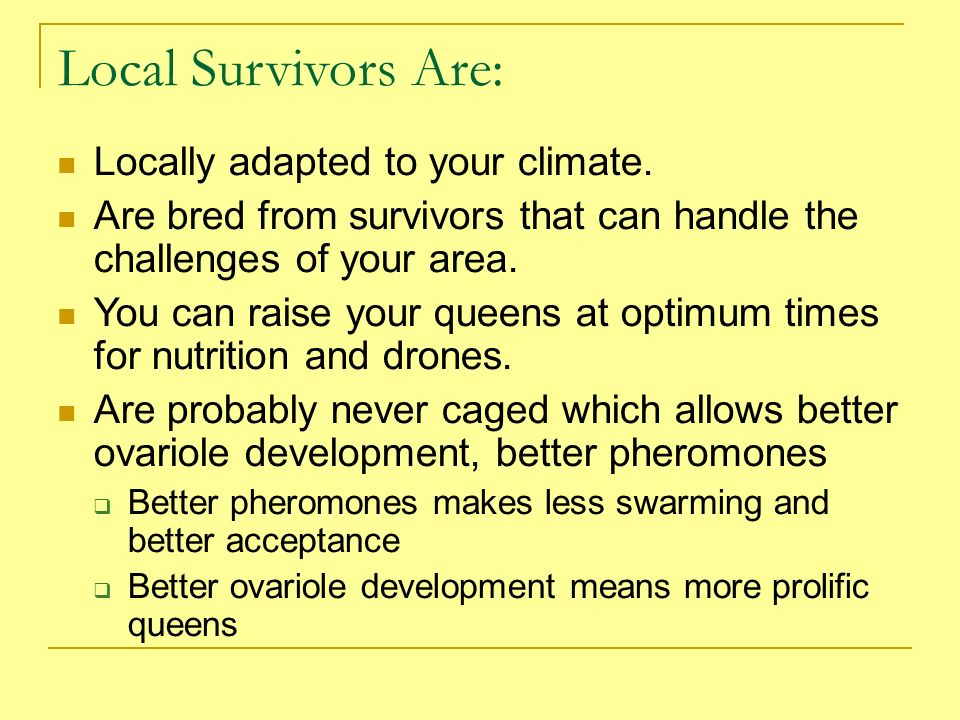 Local Survivors Are: Locally adapted to your climate.