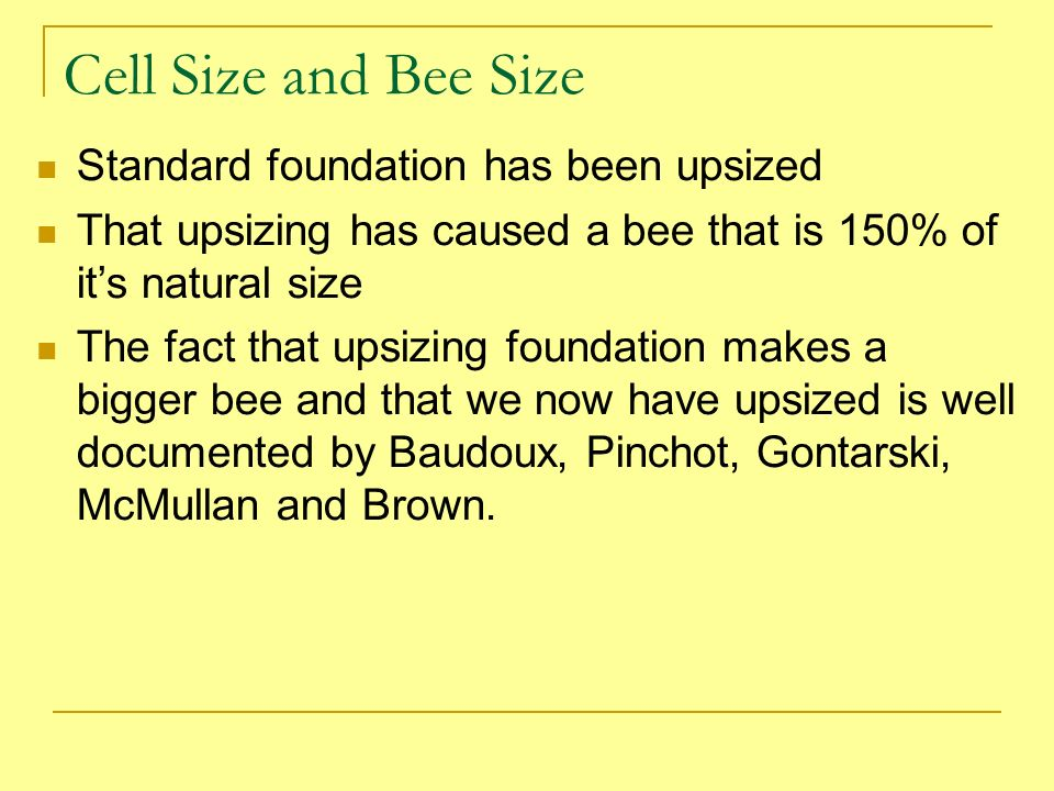 Cell Size and Bee Size Standard foundation has been upsized