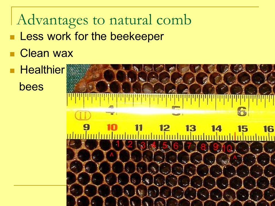 Advantages to natural comb