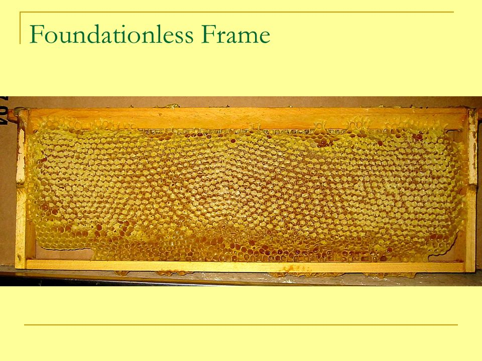 Foundationless Frame