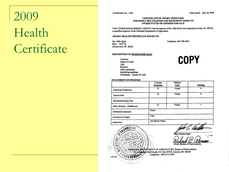 2009 Health Certificate