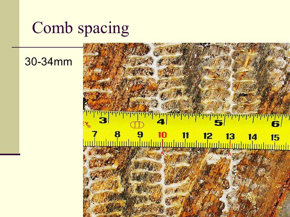 Comb spacing 30-34mm