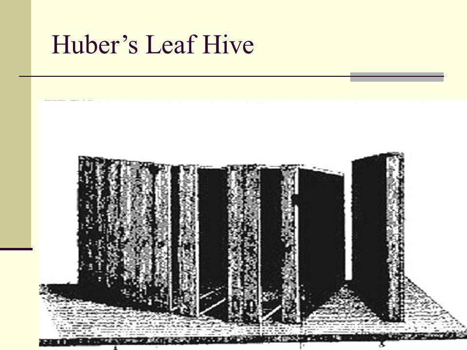 Huber's Leaf Hive