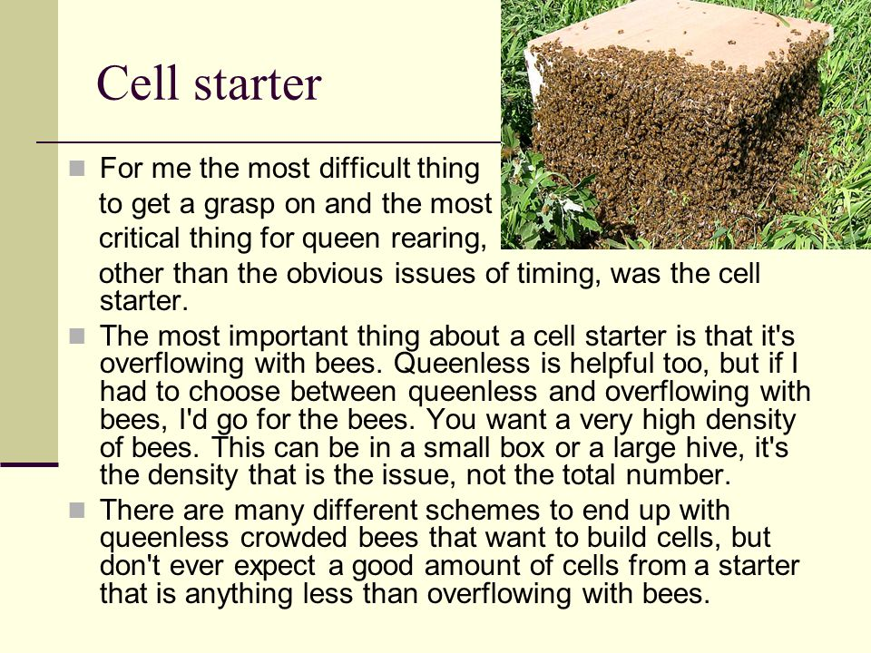Cell starter For me the most difficult thing