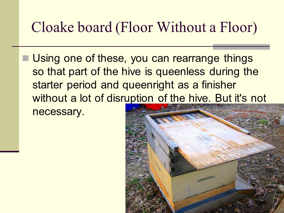 Cloake board (Floor Without a Floor)