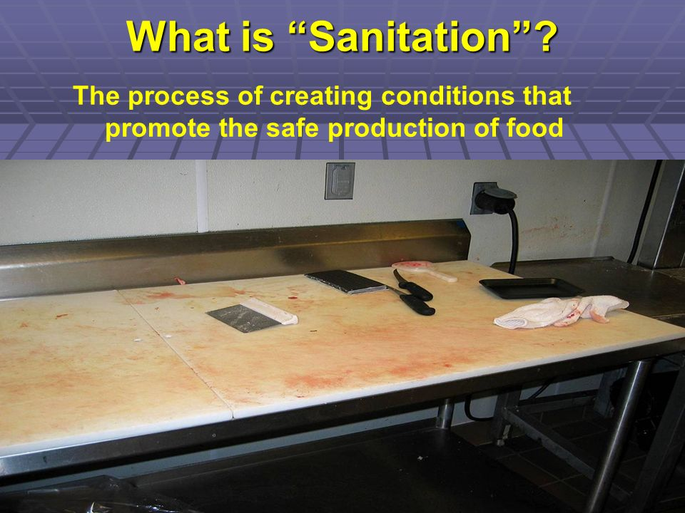 What is Sanitation The process of creating conditions that promote the safe production of food.