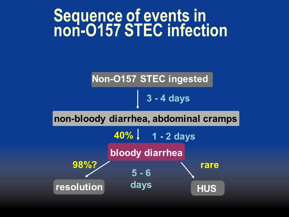 Sequence of events in non-O157 STEC infection