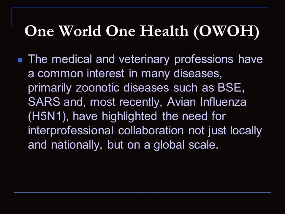 One World One Health (OWOH)