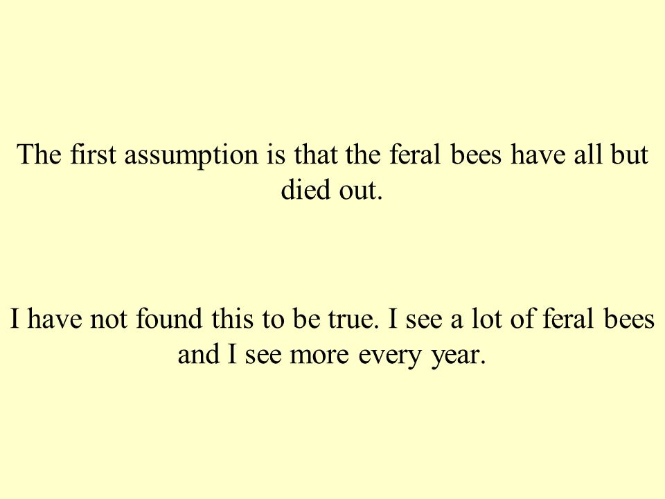 The first assumption is that the feral bees have all but died out.