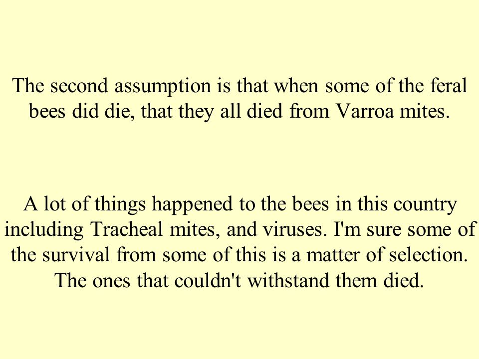 The second assumption is that when some of the feral bees did die, that they all died from Varroa mites.