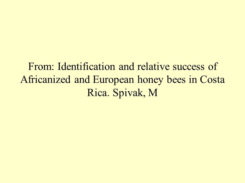 From: Identification and relative success of Africanized and European honey bees in Costa Rica.