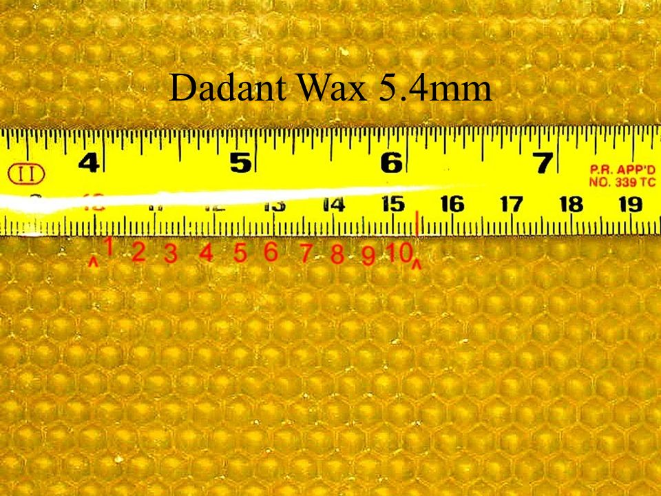 Dadant Wax 5.4mm