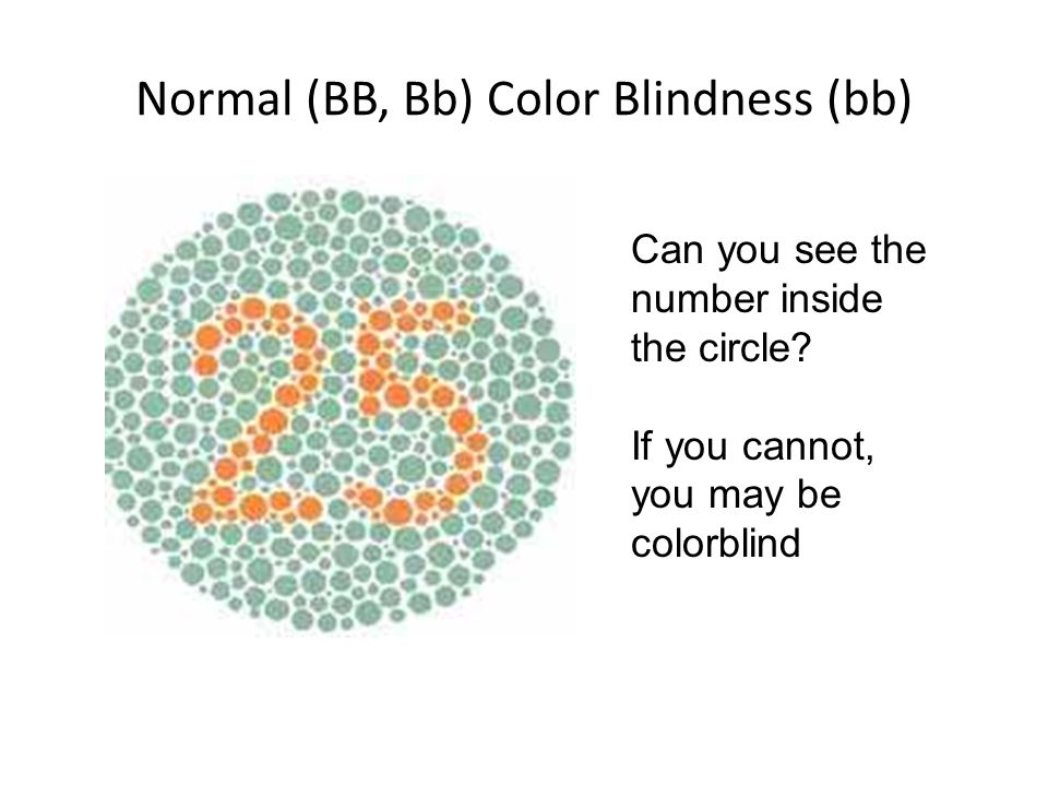 Normal (BB, Bb) Color Blindness (bb)