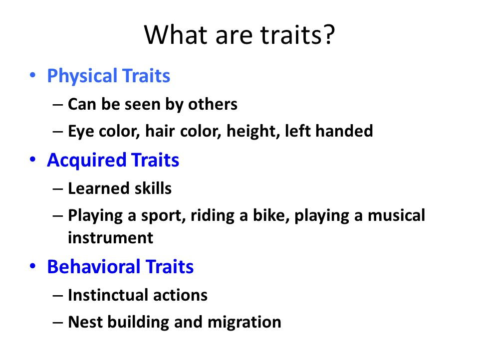 What are traits Physical Traits Acquired Traits Behavioral Traits