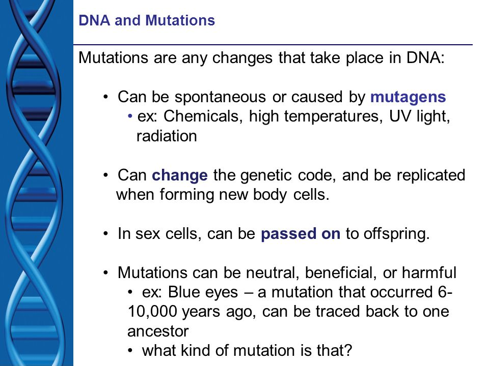 Mutations are any changes that take place in DNA: