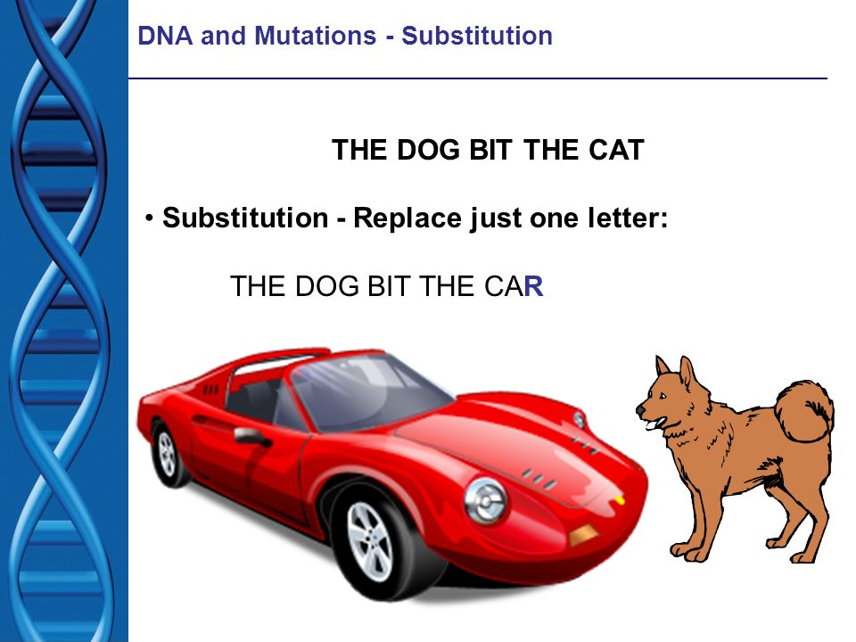 Substitution - Replace just one letter: THE DOG BIT THE CAR