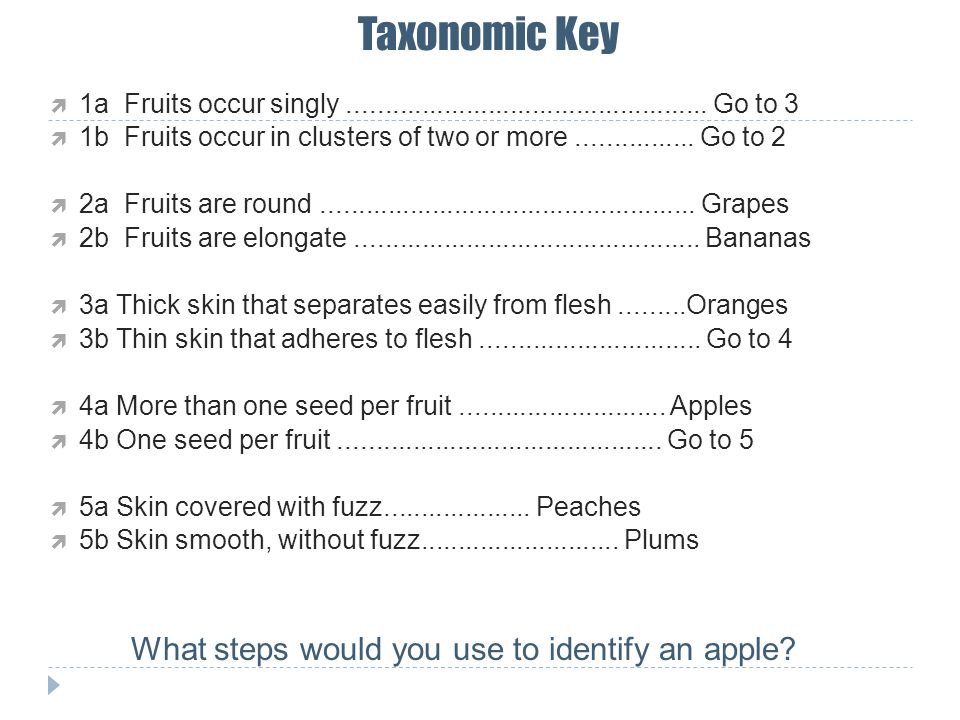 What steps would you use to identify an apple