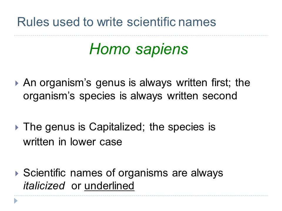 Rules used to write scientific names