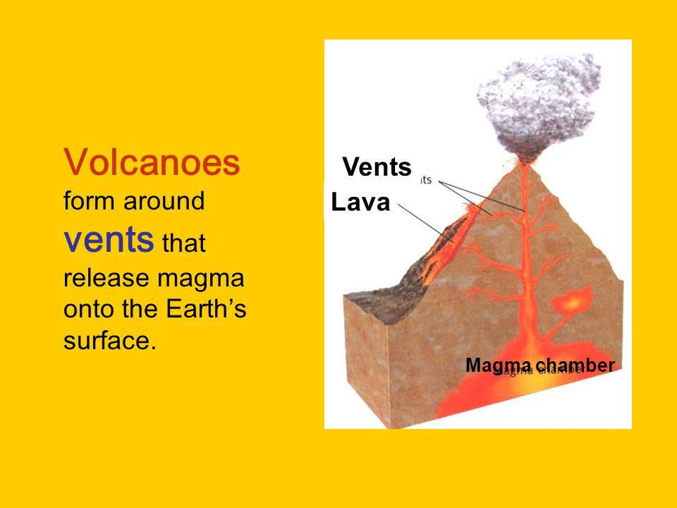Volcanoes form around vents that release magma onto the Earth's surface.