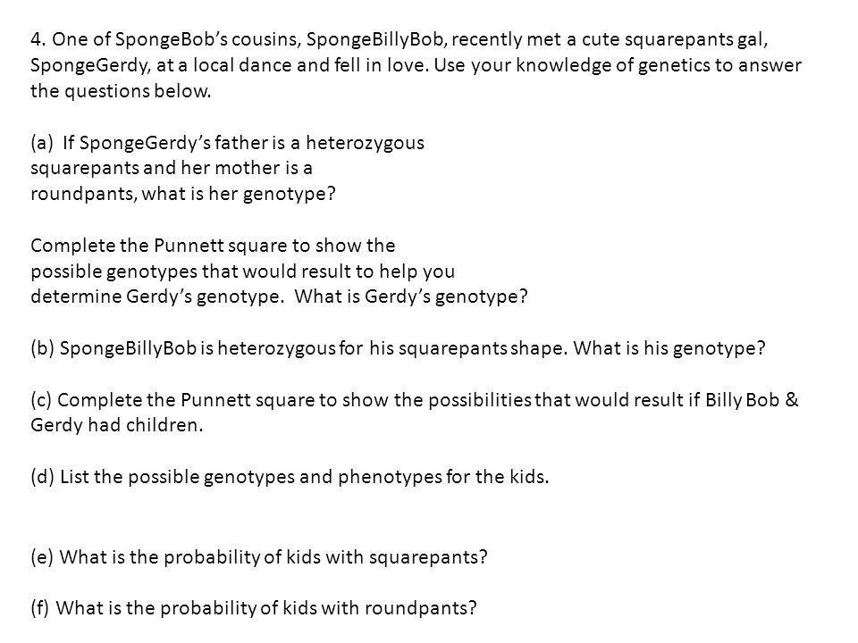 4. One of SpongeBob's cousins, SpongeBillyBob, recently met a cute squarepants gal, SpongeGerdy, at a local dance and fell in love. Use your knowledge of genetics to answer the questions below.