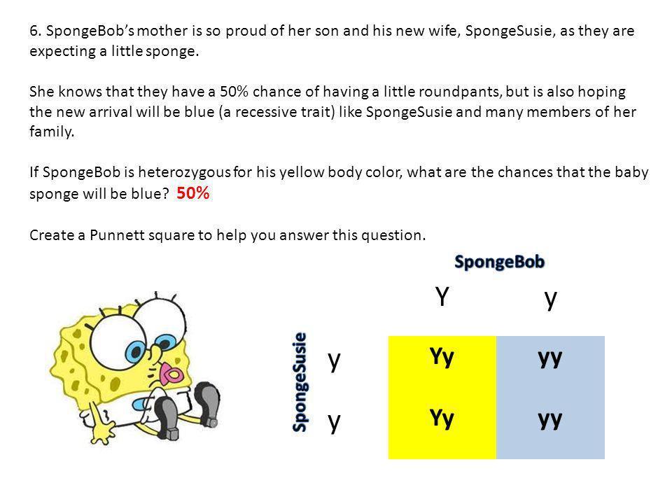 Y y Yy yy SpongeBob SpongeSusie
