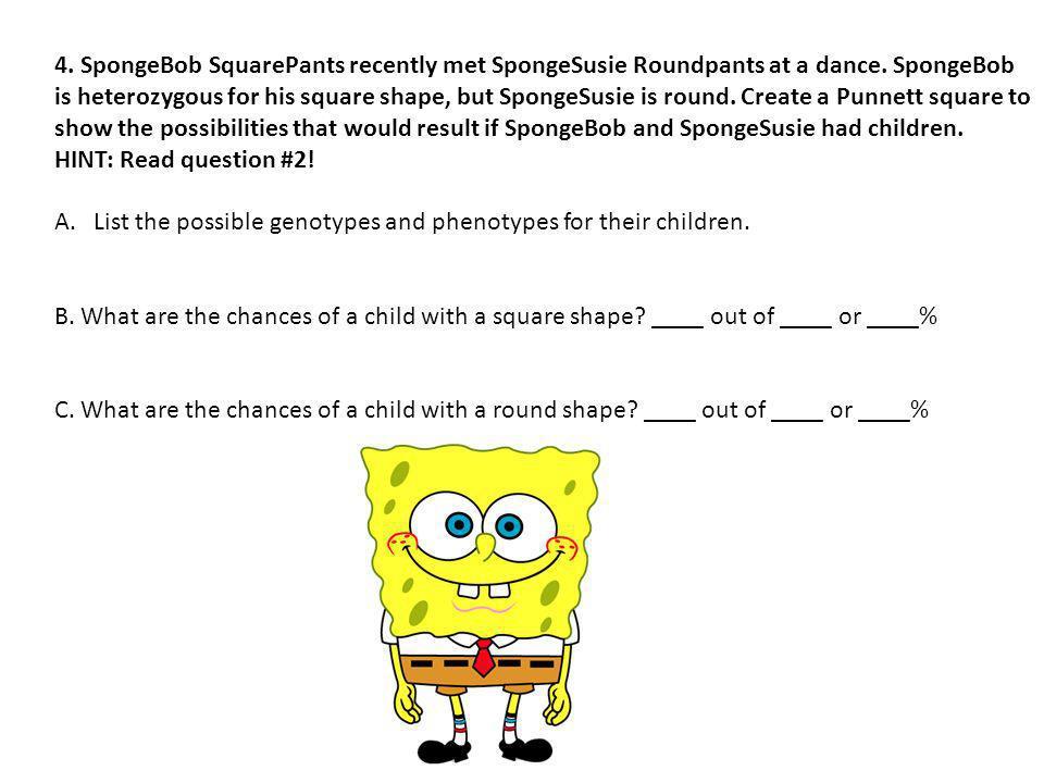 4. SpongeBob SquarePants recently met SpongeSusie Roundpants at a dance. SpongeBob is heterozygous for his square shape, but SpongeSusie is round. Create a Punnett square to show the possibilities that would result if SpongeBob and SpongeSusie had children.
