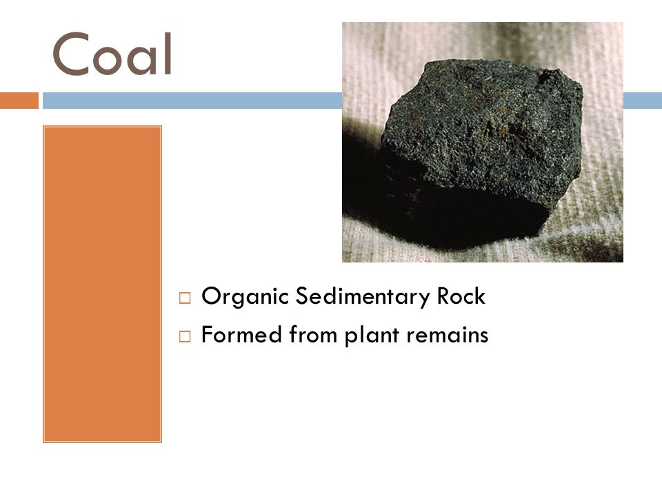 Coal Organic Sedimentary Rock Formed from plant remains