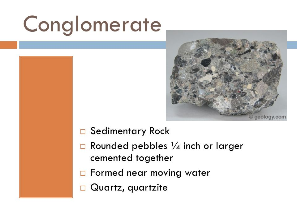Conglomerate Sedimentary Rock