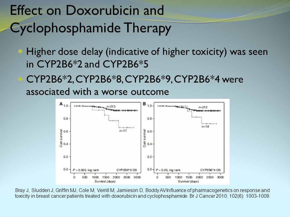 Effect on Doxorubicin and Cyclophosphamide Therapy