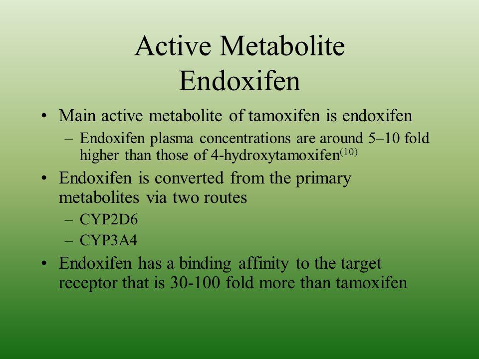 Active Metabolite Endoxifen
