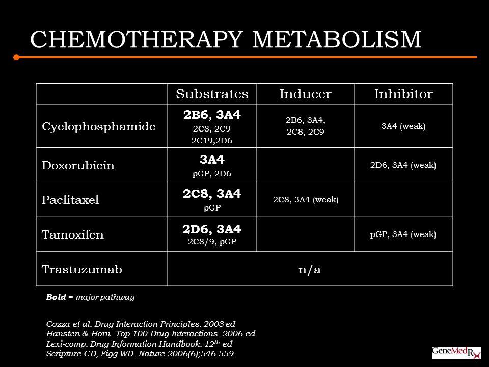 CHEMOTHERAPY METABOLISM