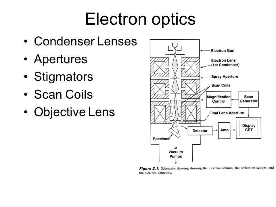 Electron optics Condenser Lenses Apertures Stigmators Scan Coils