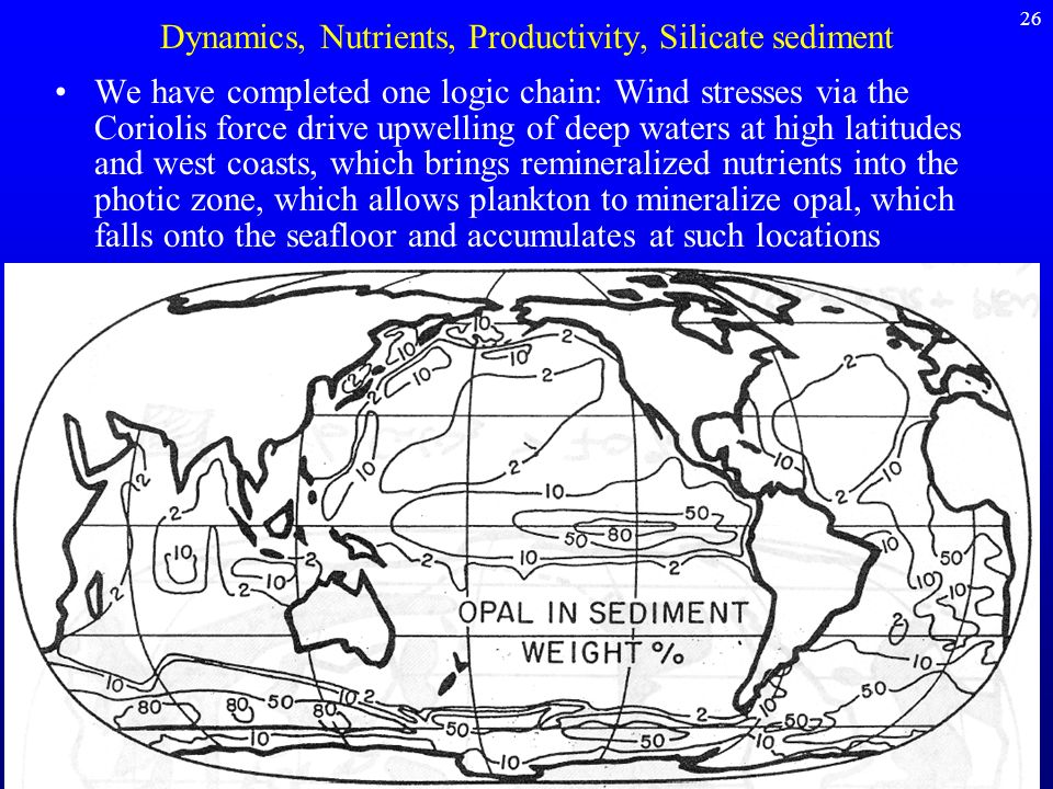 Dynamics, Nutrients, Productivity, Silicate sediment