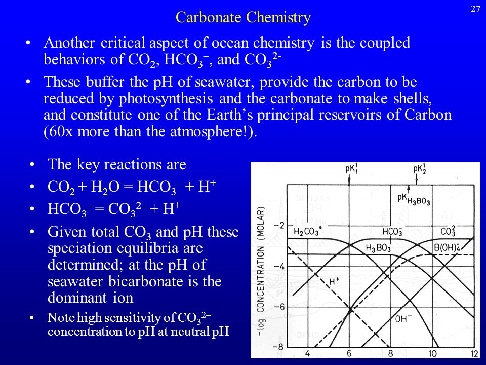 27 Carbonate Chemistry. Another critical aspect of ocean chemistry is the coupled behaviors of CO2, HCO3–, and CO32-