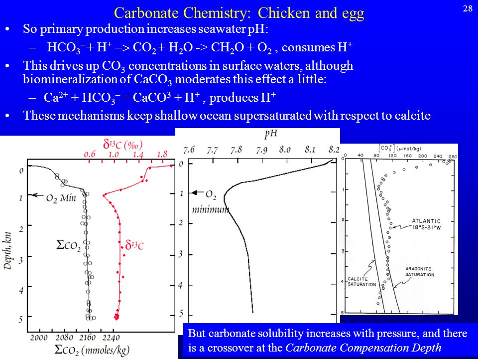 Carbonate Chemistry: Chicken and egg