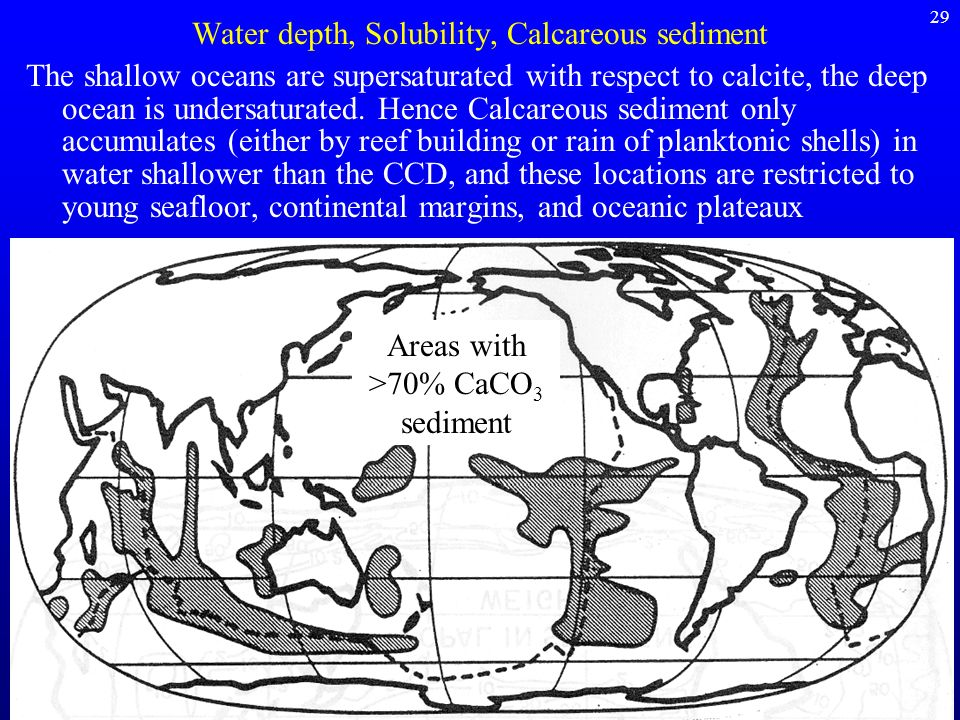 Water depth, Solubility, Calcareous sediment
