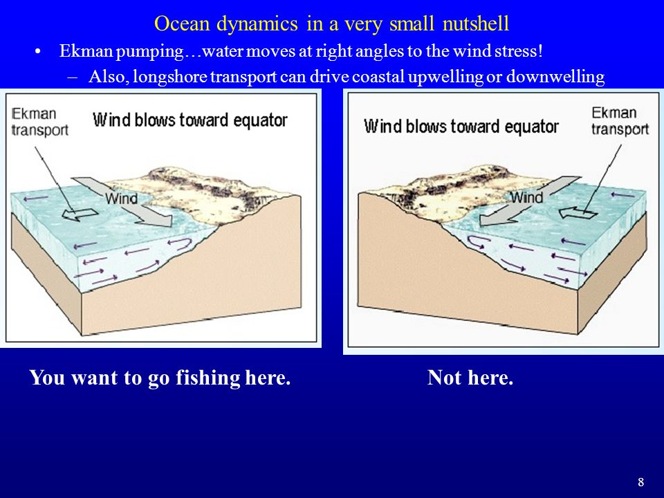 Ocean dynamics in a very small nutshell