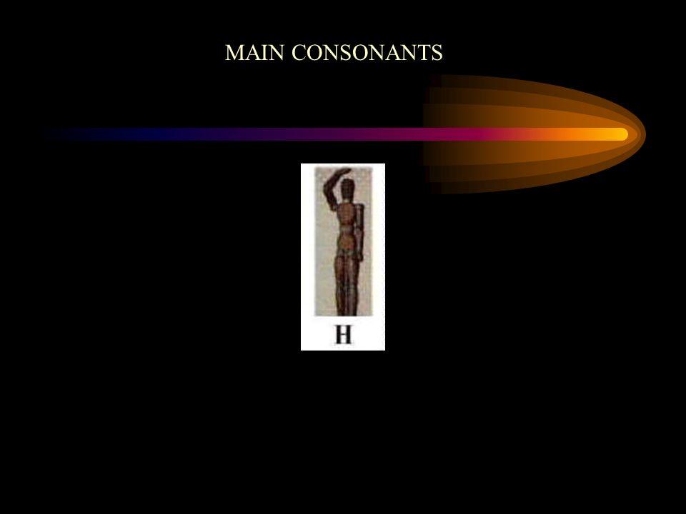 MAIN CONSONANTS
