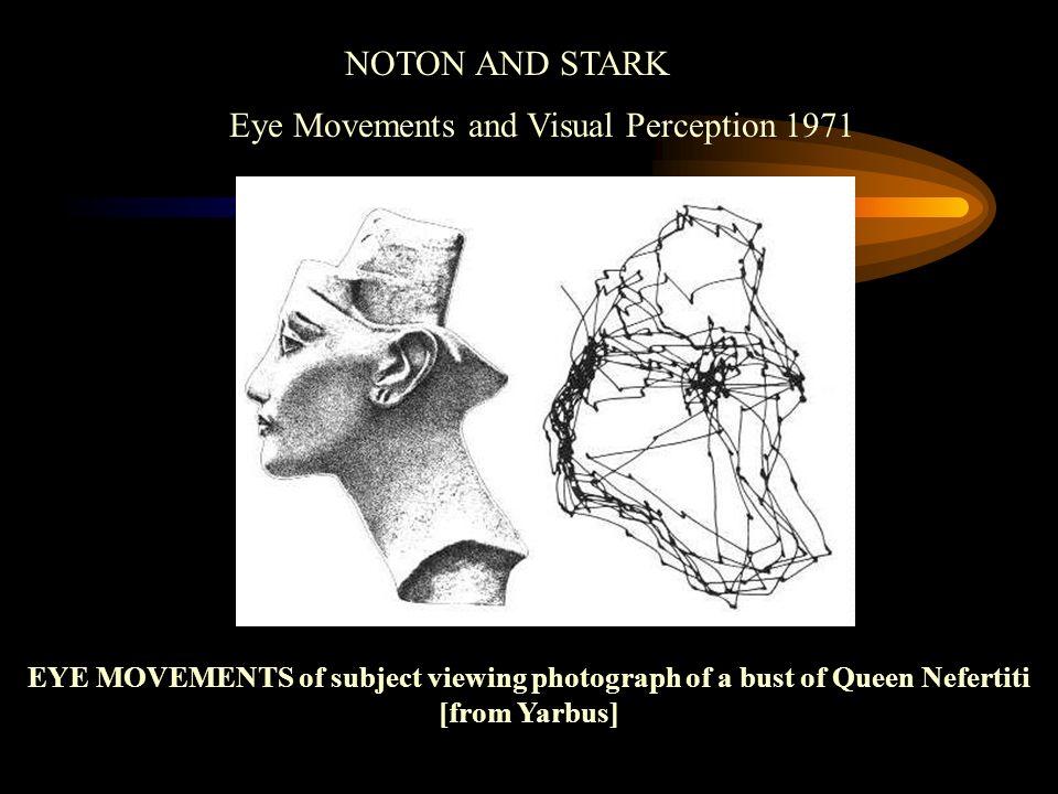 Eye Movements and Visual Perception 1971