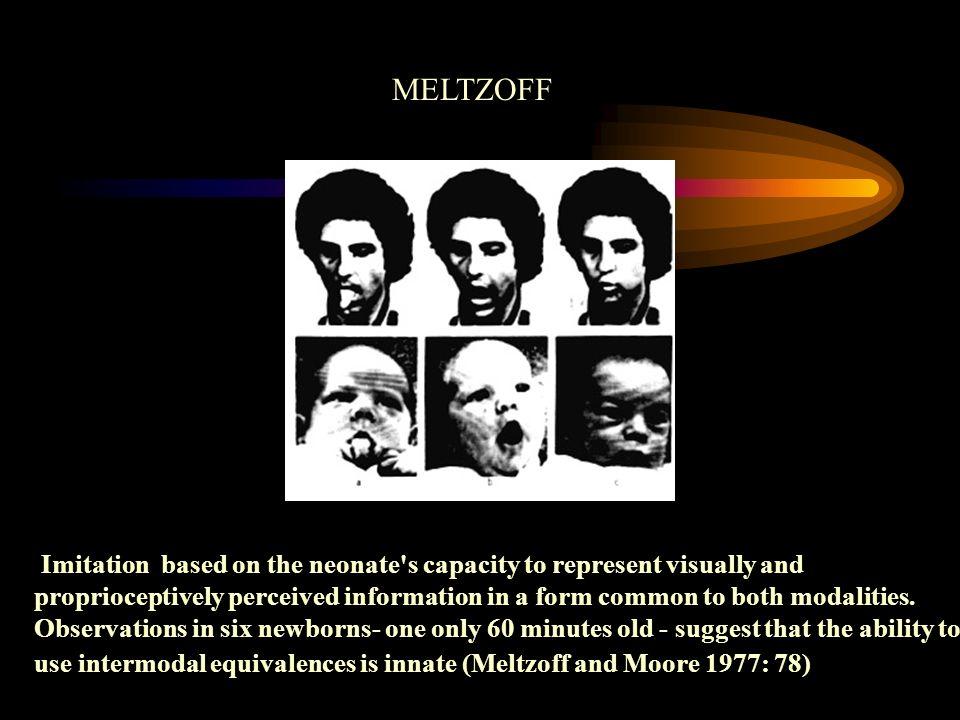 MELTZOFF