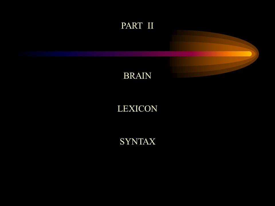 PART II BRAIN LEXICON SYNTAX