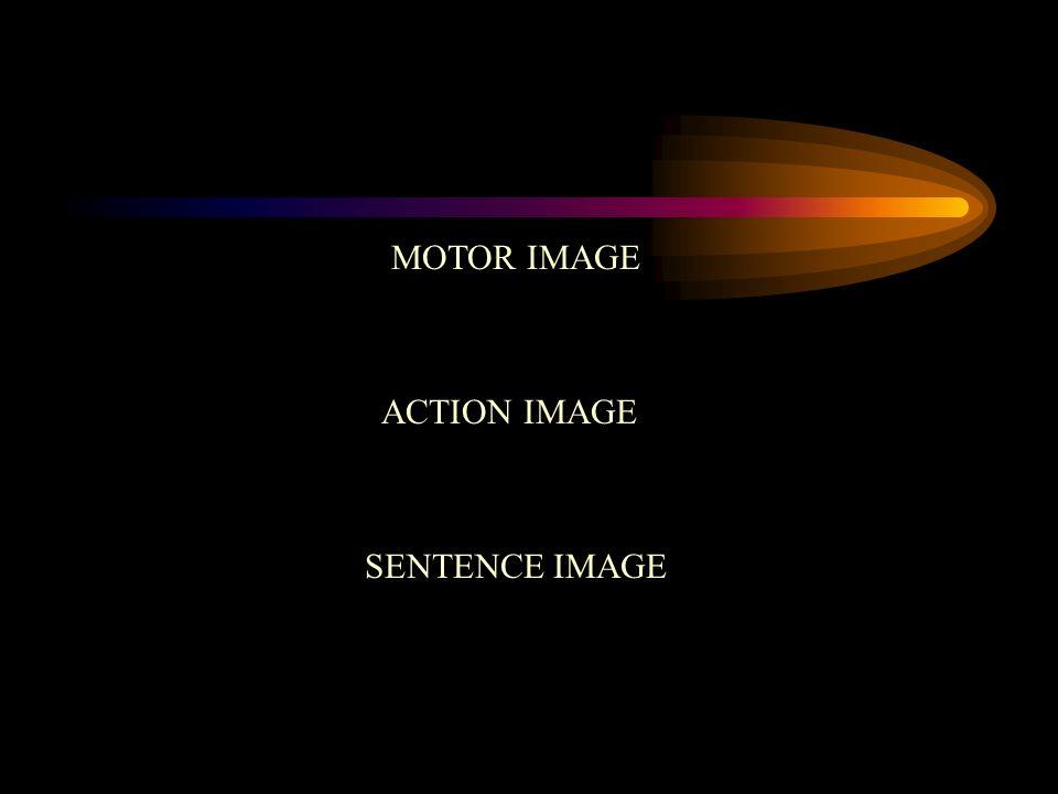 MOTOR IMAGE ACTION IMAGE SENTENCE IMAGE