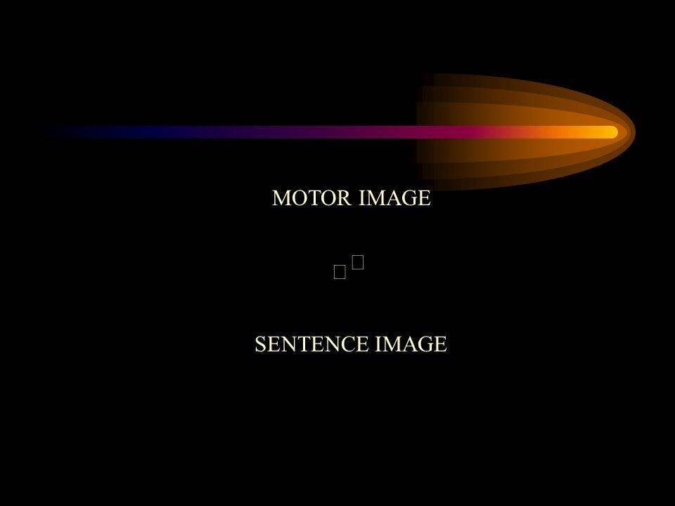 MOTOR IMAGE ß ß SENTENCE IMAGE