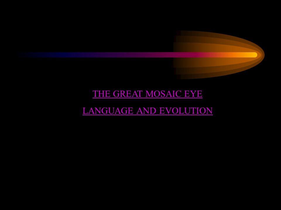 LANGUAGE AND EVOLUTION