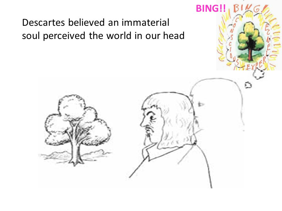 Descartes believed an immaterial soul perceived the world in our head