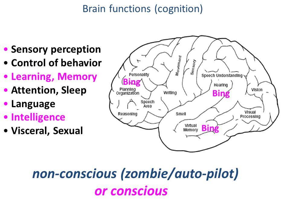 non-conscious (zombie/auto-pilot) or conscious