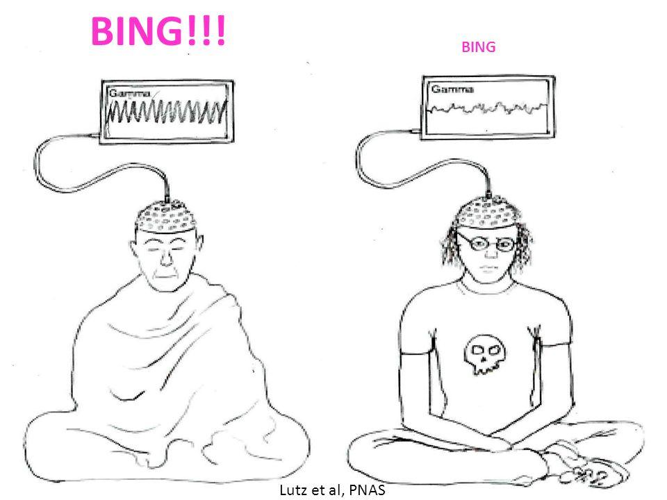 BING!!! BING Lutz et al, PNAS