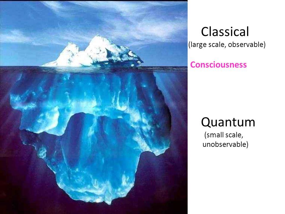 Classical Quantum Consciousness (large scale, observable)