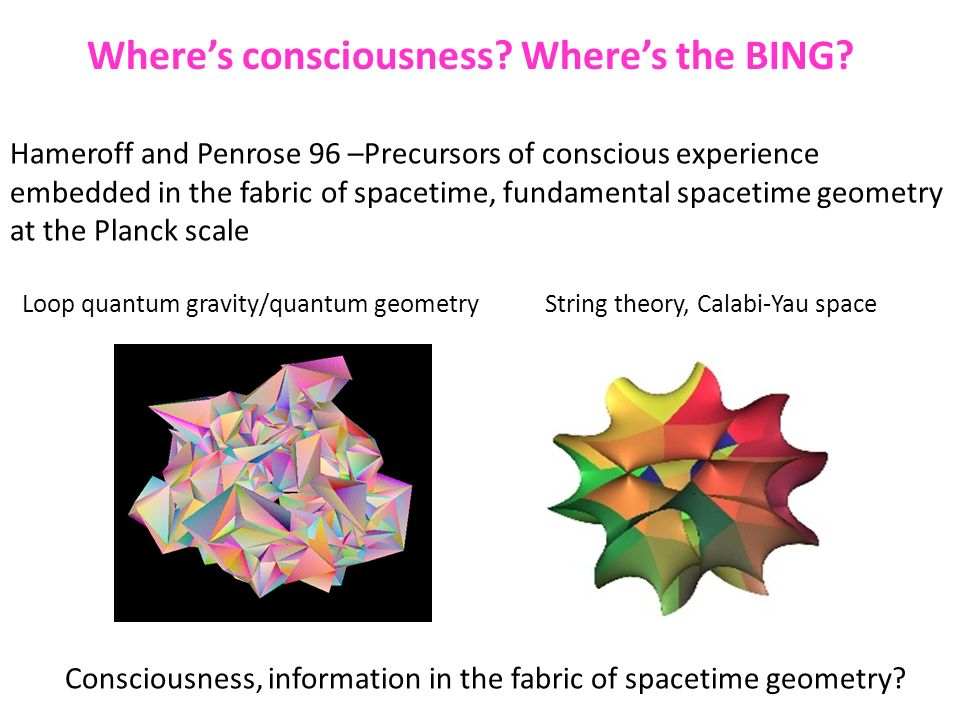 Where's consciousness Where's the BING